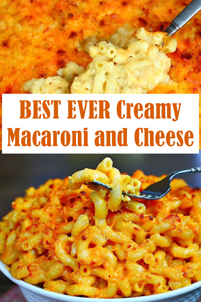 BEST EVER Creamy Macaroni and Cheese